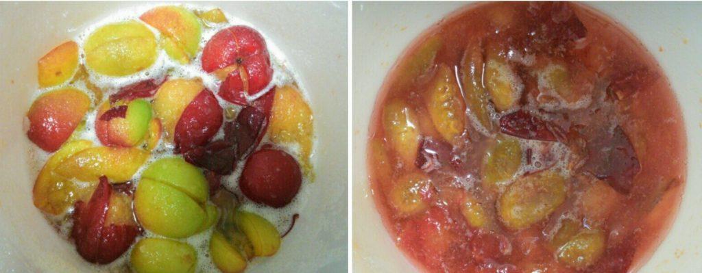 2018年7月23日(月)西条公会堂ワークショップ Vol.7「酵素たっぷりのおいしい果物ジュースを作る会編」